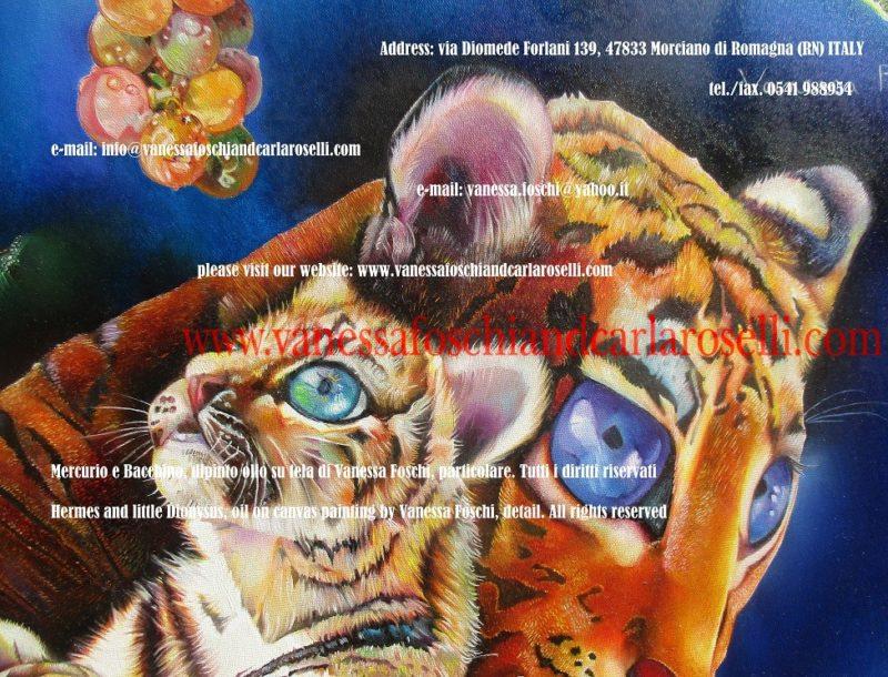 tigri-tigers-tigres- Ερμής